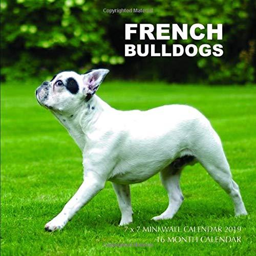 French Bulldogs 7 x 7 Mini Wall Calendar 2019: 16 Month Calendar