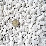 Doubleyou Geovlies & Baustoffe - Grava de mármol, grano de 18-25 mm, 1 a 20 kg, color blanco