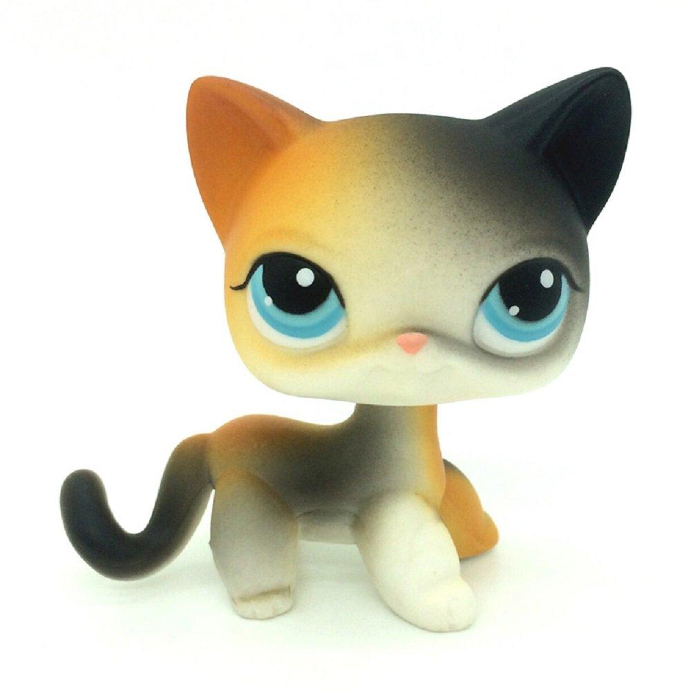 106 Littlest Pet Shop Lps Rainbow Orange Black Short Hair Cat Kitty Blue Eye Buy Online In China At Desertcart