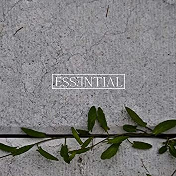 ESSENTIAL 011