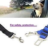 Neuftech einstellbare Auto Sicherheitsgurt Hundegurt Anschnallgurt für Hunde – Schwarz - 4
