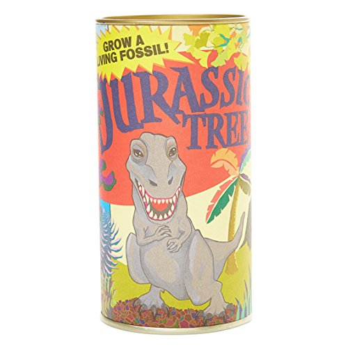 Jurassic Ginkgo | Tree Seed Grow Kit | The Jonsteen Company