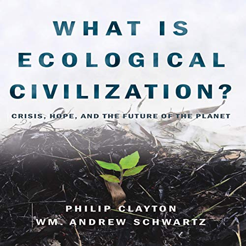 What Is Ecological Civilization? audiobook cover art