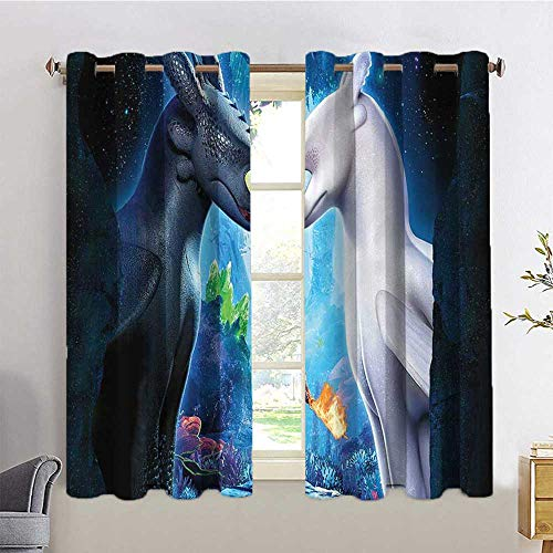 MNXNEZ Indoor Curtain Anti UV Curtain Hiccup How to Train Your Dragon The Hidden worldlg,W55 INCH x L45 INCH for Indoor Dining Room Bedroom