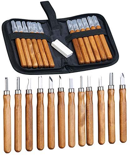 AGT Holzschnitzwerkzeug: 12-teiliges Holz-Schnitzwerkzeug mit Aufbewahrungsetui & Schleifstein (Schnitzset)