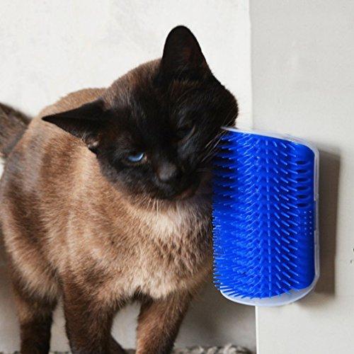 Utile en Plastique pour Animaux de Compagnie Cat Massager Brush Coin Confortable de Massage pour Les Chats