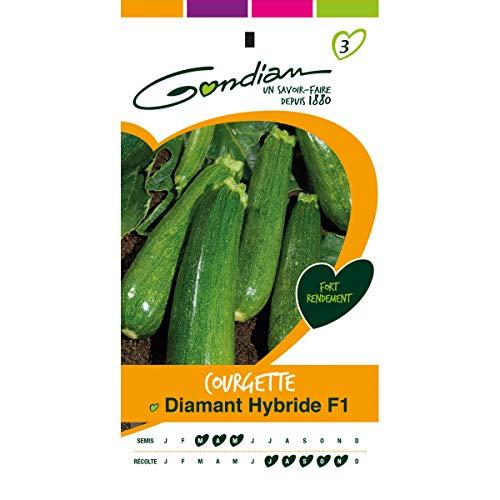 gondian - Sachet graines Courgette Diamant HF1 Gondian