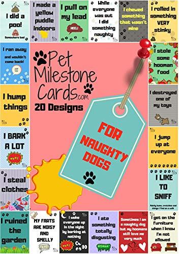7 Photocards Postkarte Lomo Karten Aufkleber Map of The Soul HughFan 30pcs Kpop BTS Fotokarten Geschenk f/ür die A.R.M.Y Fans