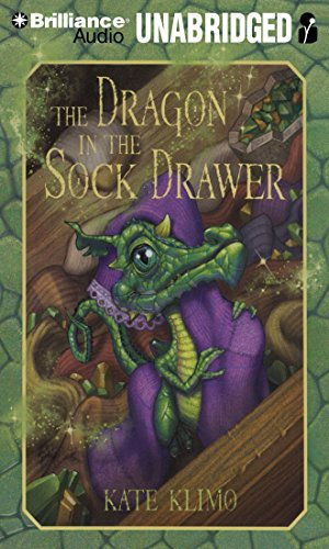The Dragon in the Sock Drawer (Dragon Keepers, Band 1)