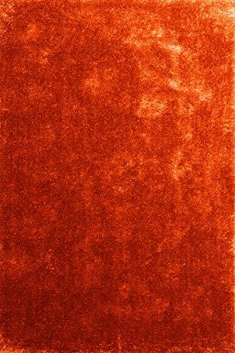 Alfombra Moderna Seasons Naranja 120x170 cm - Alfombra de Pelo Largo Blanda y Suave