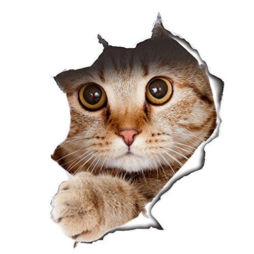 WandSticker4U®- KATZE Aufkleber in 3D Optik I Wandbild: 21x29 cm I Kühlschrankaufkleber selbstklebend, wasserfeste Autoaufkleber Möbelsticker WC Toilette Sticker für Katzenliebhaber