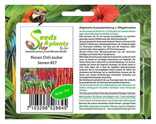 Stk - 25x Riesen Chili Capsicum a....