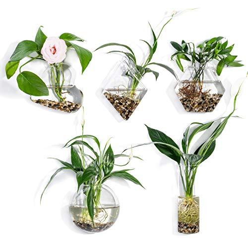 KnikGlass - Juego de 5 jarrones geométricos de pared para plantas de agua o flores, decoración de pared de jardín