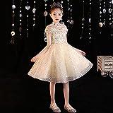 SUNXC Niña Princesa Vestido Disfraz, Disfraz de Princesa de cumpleaños-5_110 cm,Vestido de Princesa Fiesta de Vestir Disfraces