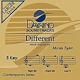 Different [Accompaniment/Performance Track]