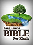 King James Bible Touch: Plus-The Story of Jesus in Harmony with the Gospels: KJV (English Edition)
