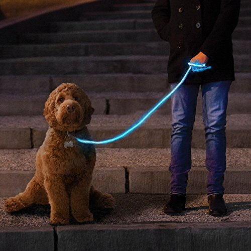 NiteyLeash - LED Glow in The Dark Pet Dog Leash (Blue)