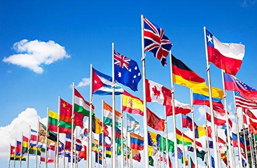 Lot 24 drapeaux différentes nations 90 x 150 cm Polyester épais résistant hôtels B & B Hotel Restaurants Lidi plages installations sportifs congrès Meeting Camping