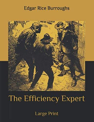 The Efficiency Expert: Large Print PDF Books