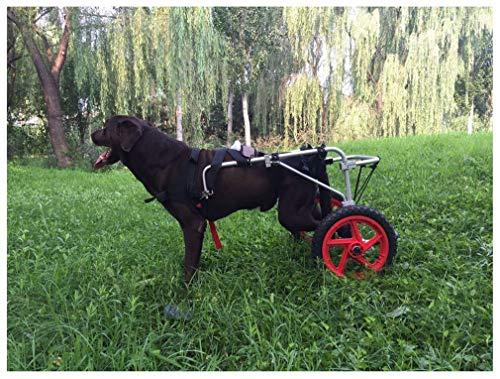 Hund Rollstuhl,Hunderollstuhl Hunderollwagen Gehhilfe,Passend für Haustier Cat Puppy Beagle Schaeferhund Lähmung Verletzt Hinterbeine Rehabilitation,Einstellbar,2 Räder 25kg (88lbs)- 55kg (121lbs)
