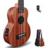 Kadence Concert Sized Ukulele 24inch (Built in Equalizer) With Bag and Tuner (Mahagony Wood)
