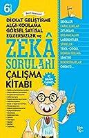 Zeka Sorulari 6; Dikkat Gelistirme Algi - Kodlama - Görsel Sayisal Egzersizler