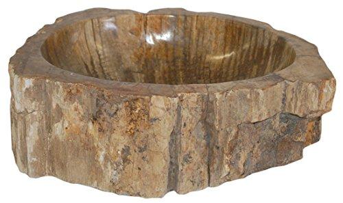 Natural Stone Sink - Petrified Wood