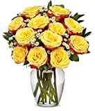 From You Flowers - One Dozen Festive Roses (Free Vase Included)