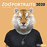 Zoo Portraits 2020 - Broschürenkalender - Wandkalender - Kunstkalender - 30x30cm - Yago Partal - Tierkalender -