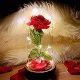 ZA-FONK-HOME Kit di Rose La Bella e la Bestia con Base Legno luci LED, Petali di Rosa in Seta Artificiale, Rosa Eterna,Magici Regali per la Mamma,San Valentino,Matrimonio,Anniversario,Natale