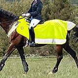 Harrison Howard Alpine Wasserdichte Hi-Vis gesteppte Pferdedecke mit Rundumschutz, Grün