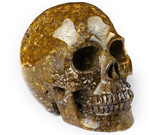 Skullis 5.0' Coffee Opal Crystal Skull, Hand Carved Gemstone Fine Art Sculpture, Reiki Healing Stone Statue.