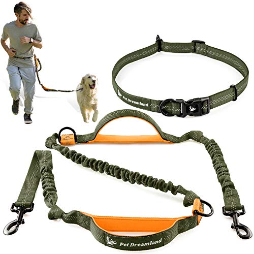 Pet Dreamland Hands Free Dog Leash for Running Medium to Large Dogs - Professional Shock Absorbing Bungee Harness - Reflective Dog Walking Waist Belt Leash