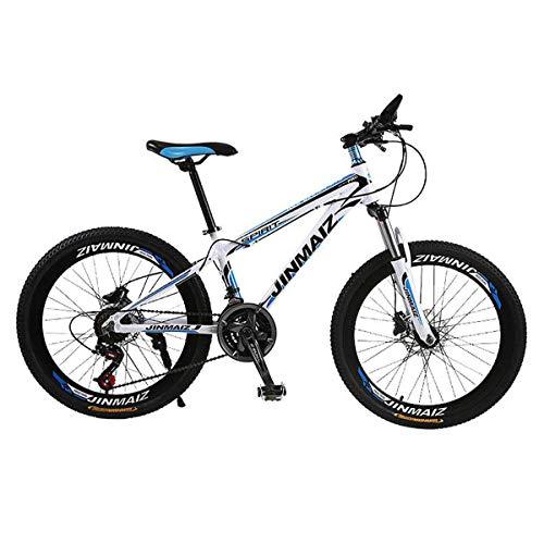 GJNWRQCY 30-Speed Mountainbike Dubbele schijfremmen Remmen Lente Vork Aluminium Mountainbike Dames 26 Inch Mountainbike