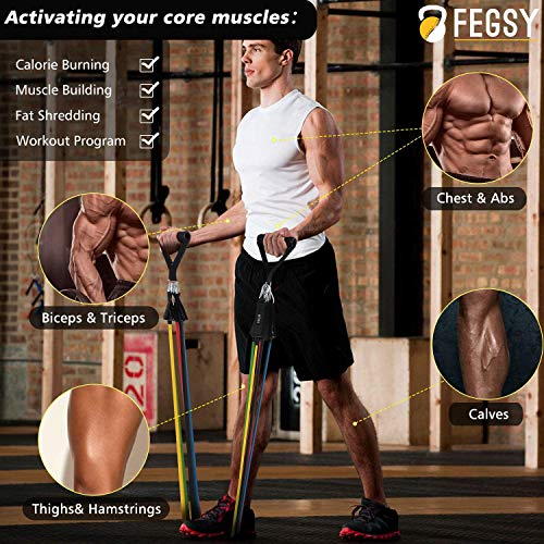 FEGSY Resistance Band Set for Exercise