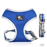 Dog Harness Small Dog Breathable Lightweight Puppy Harness and Lead Set Escape Proof