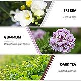 Zoom IMG-2 olio essenziale naturali esslux fiori