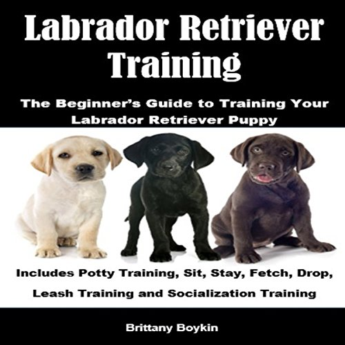 Labrador Retriever Training: The Beginner's Guide to Training Your Labrador Retriever Puppy Titelbild