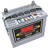 MK 8GU1H - Batería de gel para sillas de ruedas y motos (12V, 31Ah)
