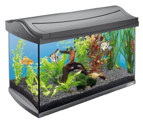 Tetra AquaArt Discovery Line Aquarium-Komplett-Set 60L Anthrazit