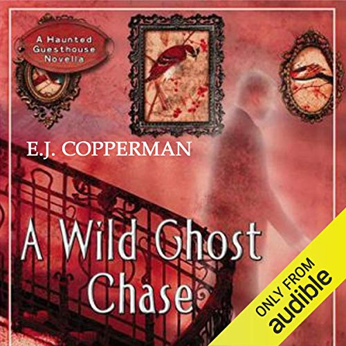 Couverture de A Wild Ghost Chase