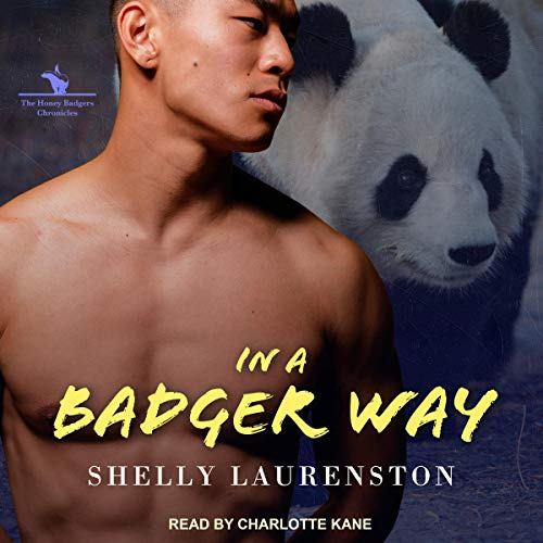 In a Badger Way audiobook cover art