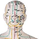 Zoom IMG-1 albb modellino maschile human meridian