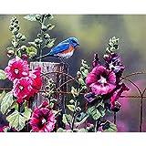 Pintura por Números DIY Pintar por Numeros para Adultos Niños (Pájaro y flor) Pintura al óleo Kit con Pinceles y Pinturas, Lienzo Regalo de Pintura 40 x 50 cm Sin Marco
