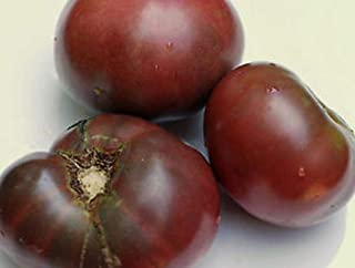 Black Carbon Tomato Seeds - One of the best tasting black tomatoes!!! (25 - Seeds)