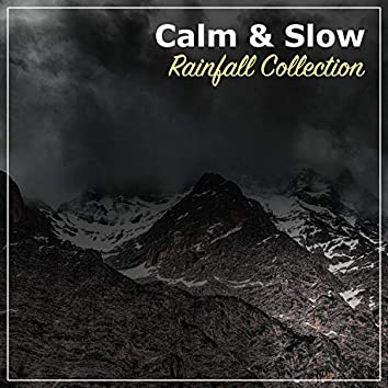 #20 Calm & Slow Rainfall Collection for Relaxation