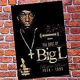 XTmBC Biggie Smalls/DITC Big Rock West Coast Rap Hip Hop Rap Singer Poster Hight Quality Home Decor Wall Art Decoración del hogar-Sin marco50x75cm