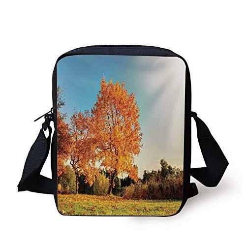Scenery Decor,Autumn Sight with Pale Falling Leaves in Park Foliage Nature Season Concept,Orange Blue Print Kids Crossbody Messenger Bag Purse