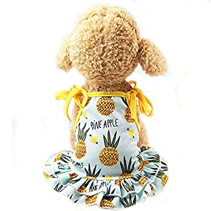 BBEART Pet Clothes,Lovely Summer Fruit Dog T-Shirt Puppy Clothes Dog Skirt Dress Cats Clothes for Small Dogs Cats Puppy (XS-Back Length 20cm, Pineapple Skirt)