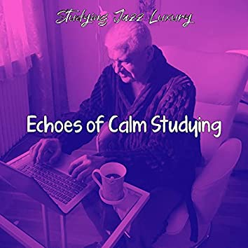 Echoes of Calm Studying